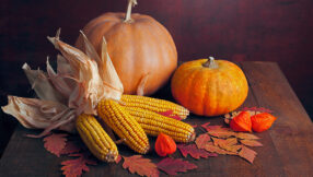 A Thanksgiving Story: The Farmer and the Seed Corn